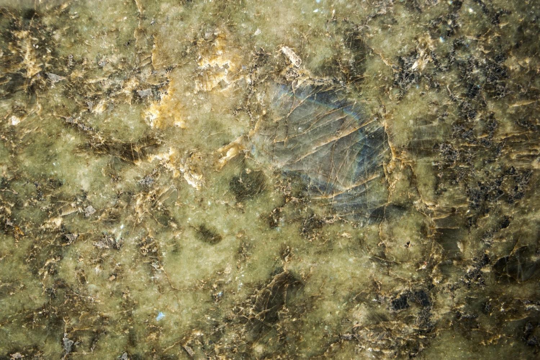 Labrador Green (3)
